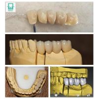 Quality Dent Expert